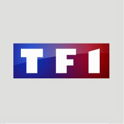 l 39 audience tv de serbie france sur tf1. Black Bedroom Furniture Sets. Home Design Ideas