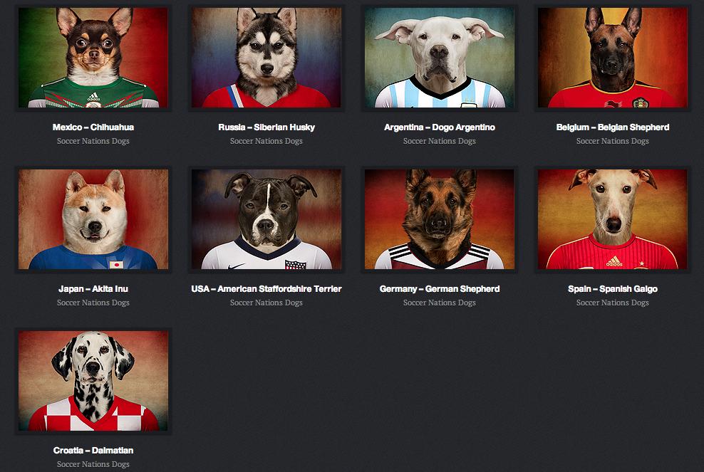 Coupe du monde les quipes qualifi es repr sent es par des chiens - Le monde du convertible ...