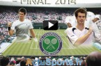 streaming wimbledon-2014-djokovic-Federer