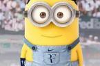 Fed'Minion
